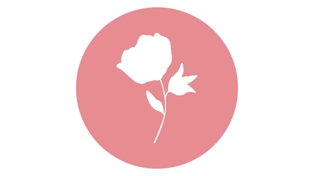 ブルーミーライフのプラン別料金とお花の本数