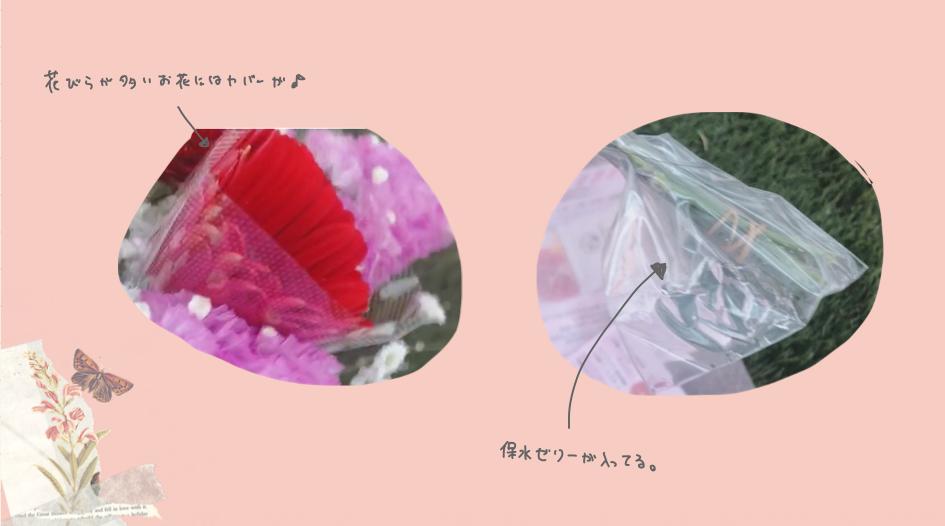 ブルーミーライフのお花が枯れない工夫