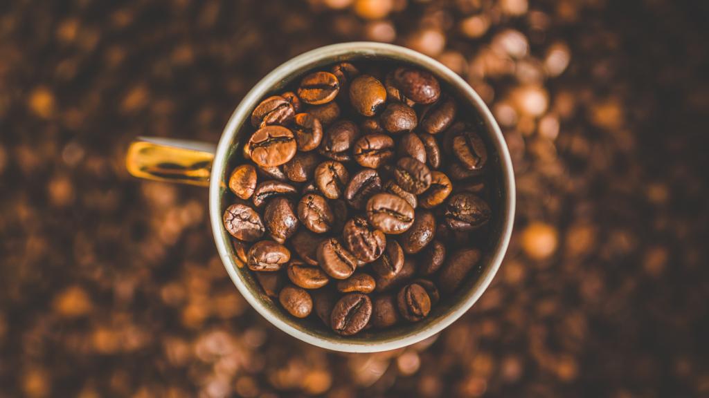 TAILORED CAFE定期便のプランと価格