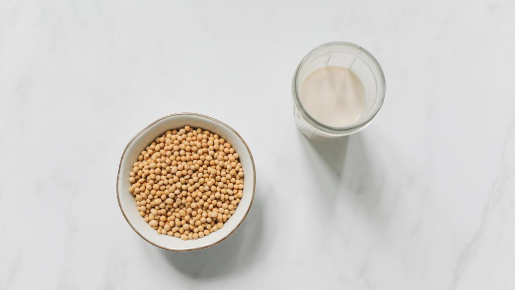 豆乳のサブスクリプションサービスで、豆乳のある生活を始めよう