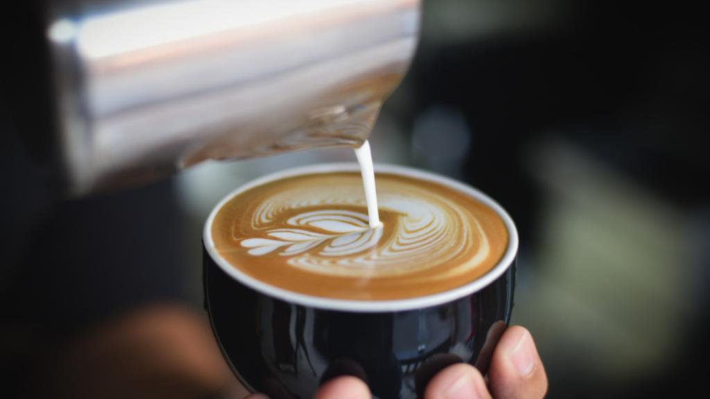 【レビュー】TAILORED CAFE定期便をお試ししてみようと思ったきっかけ♪