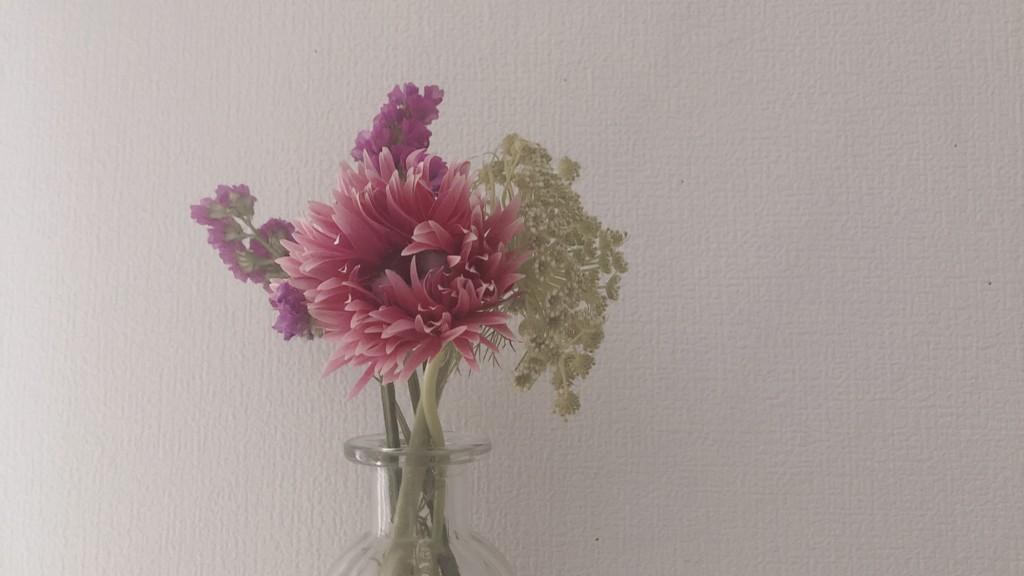 ブルーミー(bloomee)から今回届いたお花