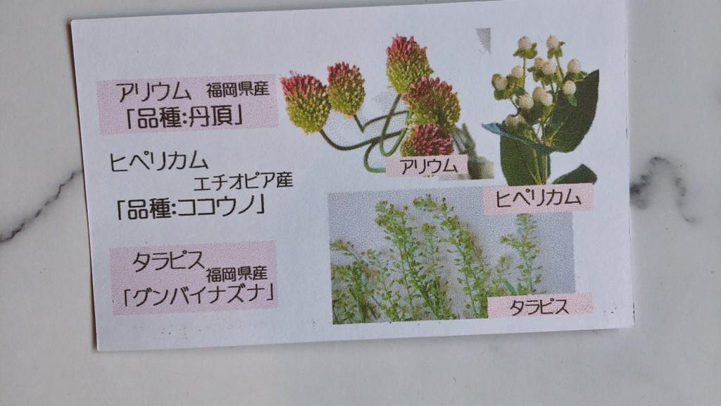 ブルーミー(bloomee)から届いたお花の名前カード