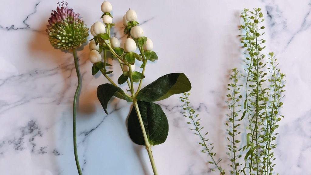 ブルーミー(bloomee)から届いたお花の種類