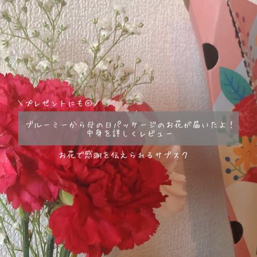 ブルーミーから母の日パッケージのお花が届いた!中身を詳しくレビュー